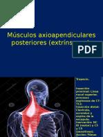 Presentacion Musculos Extrinsecos Axioapendiculares