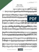 Stamitz Feinenoten_duo_op19 für Violin Cello