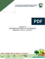 Primer Informe Intermedio UNAG-UE 13 3 15revisado