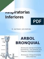 7= Vías Respiratorias Inferiores.pptx