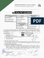 Acta 12/2015 Comité Seguridad y Salud Laboral UT2 Trgasa CV