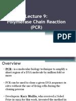 Lecture 9 PCR