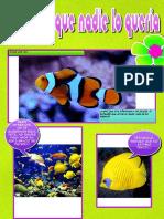 El pez al que nadie lo queria (Laura y Alba).pdf
