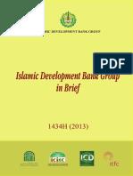 IDB Group Brief 2013