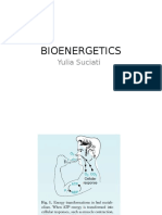 Bioenergetic, krebs cycle, bio-ox 2011 YS.ppt