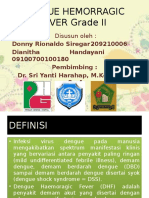 pp dengue hemorragic fever