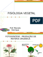 Fisiologia Vegetal (Modificado em 19/08/2006)