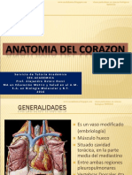 2016 - ANATOMÍA DEL CORAZÓN - TUTORÍA ACADÉMICA