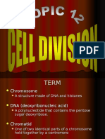 c3.Cell Division