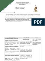 plan especial resistencia.docx