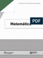 Programas Matemáticas