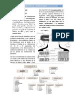 2. Inhibidores de La Pared Celular - Farmacología II