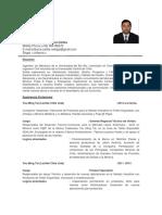 Resumen Profesional Rodrigo Marcelo Irribarra Cartes ( 2014 ).pdf