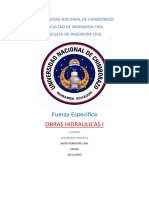 fuerza especifica.pdf