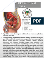 fisiologi manusia KELMPOK 3.ppt