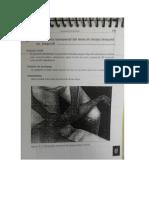 Trabajo de Terapia Manual (Imágenes)