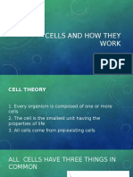 Cells and How They Work