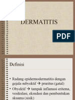 2. Dermatitis