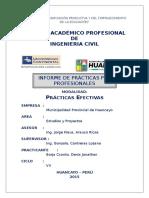 Informe Final_Practicas Profesionales
