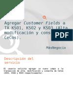Agregar Customer Fields a KS01, KS02 y KS03