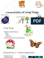 characteristics of living things small