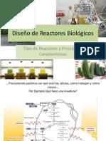 Diseño de Reactores Biológicos