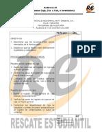 Audit3_ProgAudit (1)
