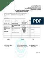 Formato Programa de Trabajo Semestral 2015 b