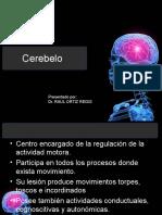 Clase Cerebelo ROrtizR 2015