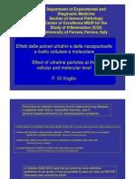 Polveri Ultrafini e Nanoparticelle2_3