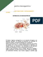 Sistema Digestivo Monogastrico.docx