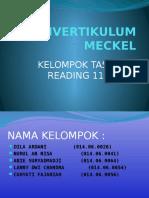 Divertikulum Meckel