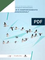 Comportamento Organizacional Ua-1