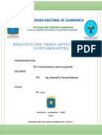 Trigo Ica 20 Informe