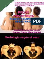Tema 11 Pelvis Obstetrica