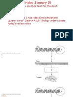 dna test reviewwebsite