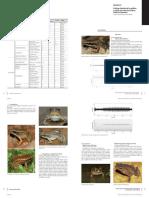 Anfibios y reptiles registrados en las áreas focales del RAP Calderas 2008.