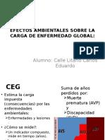 Efectos Ambientales Sobre La Carga de Enfermedad Global