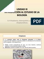 UNIDAD III 3.2 Citoplasma, Citoesqueleto y Organelos
