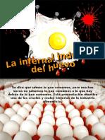 La Infernal Industria Del Huevo