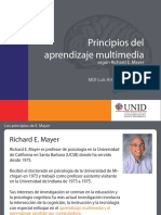 principios aprendizaje multimedia