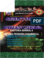 Auditoria Financiera Del Sector Pesquera s.a.a. Final