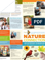 The Nature Connection —Brochure