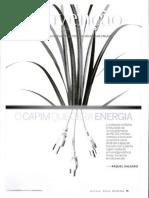 CAPIM ENERGIA