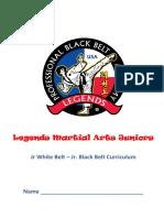 Junior Curriculum Binder.pdf