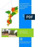 Food Security and Vulnerability Analysis_Mocambique