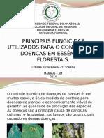 Patologia - Lenara Bahia