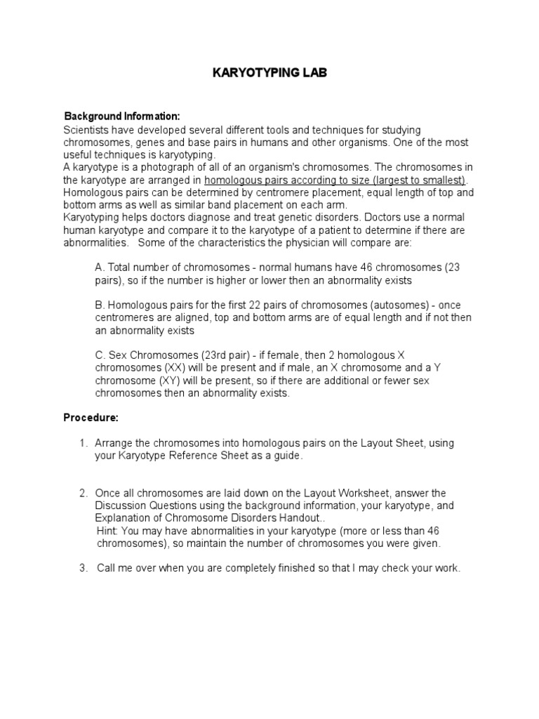 3 Karyotyping Lab Karyotype – Chromosomes Worksheet