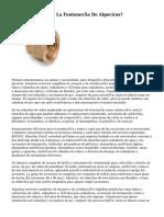 ¿En Que Consiste La Fontanería De Algeciras?