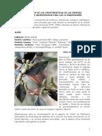 Descripcion de Especies Forestales